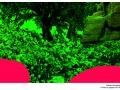 bonsai park(etail)